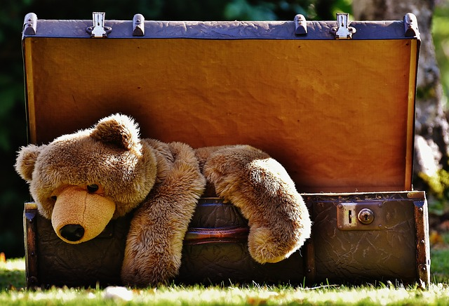 luggage-1650174_640